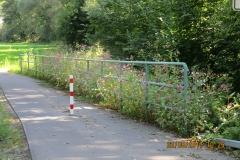 Radweg Stockhausen